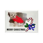 MERRY CHRISTMAS YORKSHIRE TERRIER Rectangle Magnet