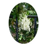 Snowdrops Over a Fence Ornament (Oval)