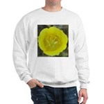 Yellow Mariposa Lily Sweatshirt