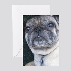 Pug Valentine's Greeting Cards (Pk of 10)
