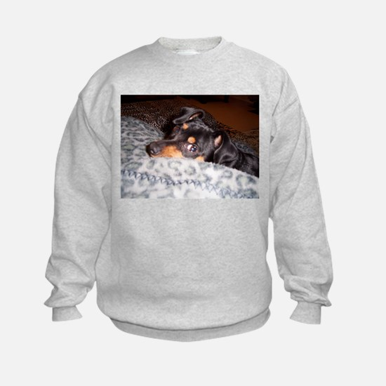 Min Pin Sweatshirt