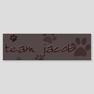 """Team Jacob"" Bumper Sticker"