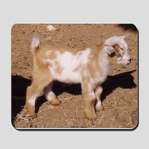 Nigerian Dwarf Goat Mousepad