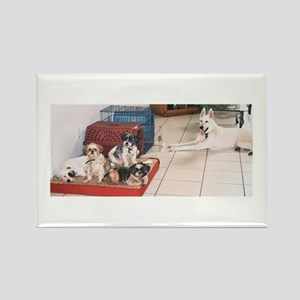 The Dog House Rectangle Magnet
