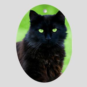 Beautiful Black Cat Oval Ornament