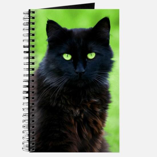 Beautiful Black Cat Journal
