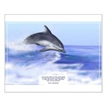 Small Dolphin Inspirations Poster