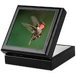 Male Hummingbird Flying Keepsake Box