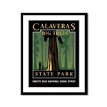 Big Trees Framed Panel Print