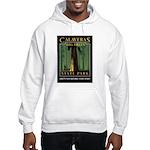 Big Trees Hooded Sweatshirt