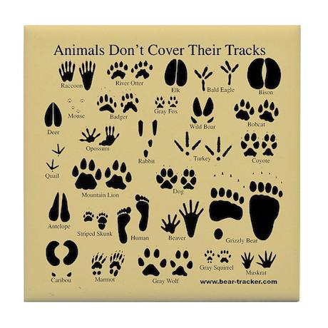 animal tracks pawprints tile coaster by tracker2