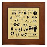 Animal Tracks Pawprints Framed Tile