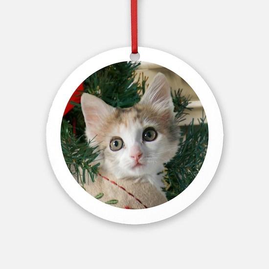 Kitten in Christmas Stocking Ornament (Round)