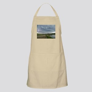 Cooney Lightning Products BBQ Apron