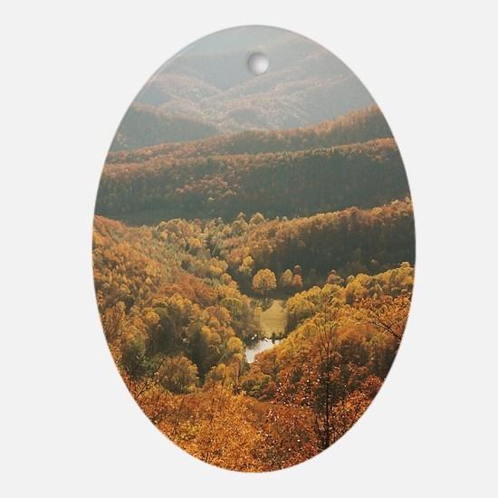 Appalachian Homestead Oval Ornament
