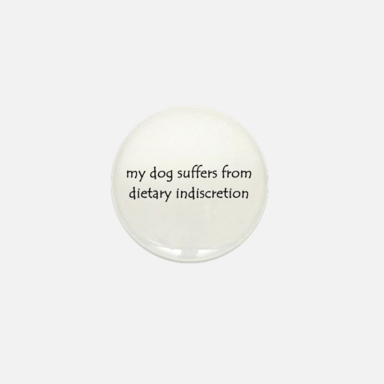dietary indiscretion Mini Button