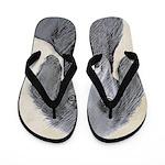 Flat-Coated Retriever Flip Flops