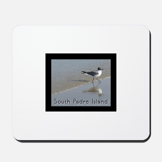 South Padre Island, TX seagul Mousepad