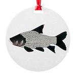 Giant carp barb Ornament