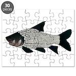 Giant carp barb Puzzle