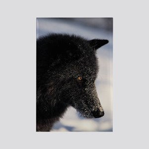 """""""Wolf"""" Rectangle Magnet"""
