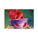 salsa dog Rectangle Magnet (100 pack)