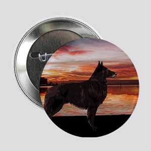 Belgian Tervuren Sunset Button