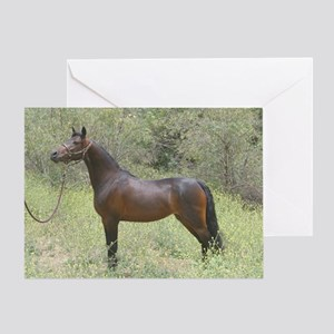 Card-Bay Horse Standing In Field Of Greeting Cards