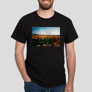 skagit valley 2002 Dark T-Shirt