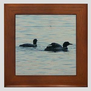 Maine Loons Framed Tile