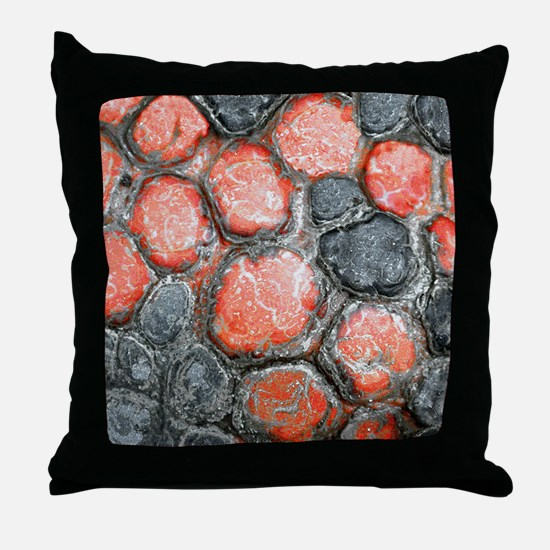 Red-footed Tortois Throw Pillow