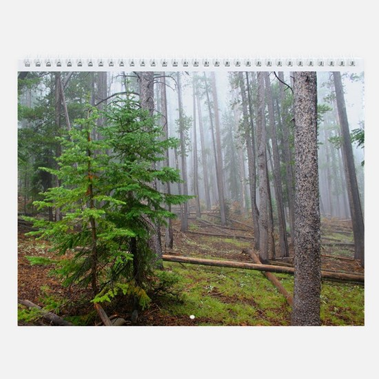 Nature pictures, Wall Calendar