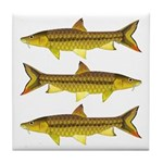 Golden Mahseer Tile Coaster