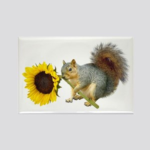Squirrel Sunflower Rectangle Magnet