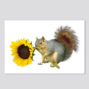Squirrel Sunflower Postcards (Package of 8)