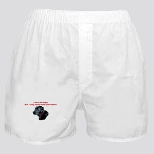 Sleep with Labradors Boxer Shorts