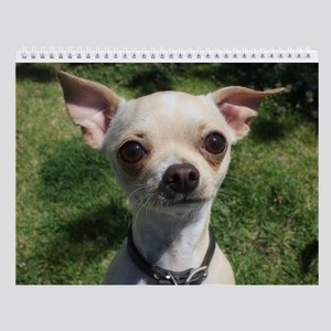 Small Dog Park Wall Calendar