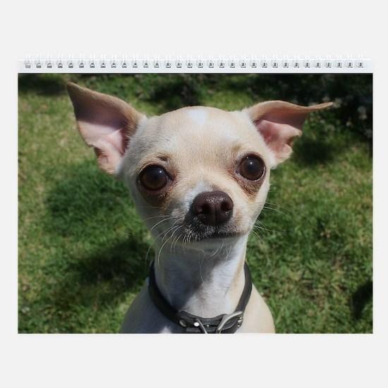 Small Dog Park Wall Calendar