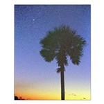 South Carolina State Flag Tableau Small Poster