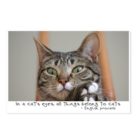 All Things Belong to Cats Postcards (Package of 8)