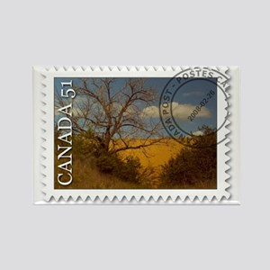 Spruce Woods Stamp Rectangle Magnet