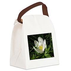 Crocus Canvas Lunch Bag