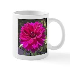 Small Mugs Mugs