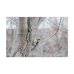 Woodpecker Mini Poster Print