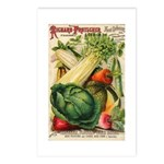 Richard Frotscher Seed Co. Postcards (Package of 8