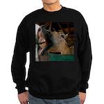 Humorous Equine Sweatshirt (dark)