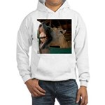 Humorous Equine Hooded Sweatshirt