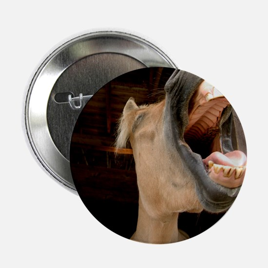 "Humorous Equine 2.25"" Button (10 pack)"