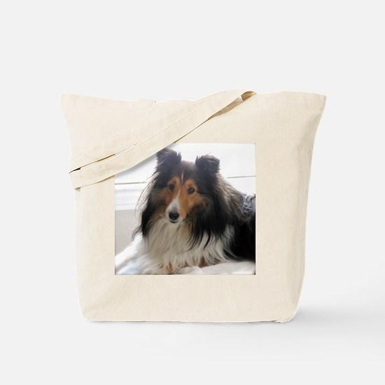 Sheltie / Shetland Sheepdog Tote Bag