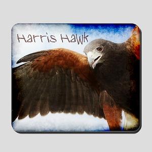 Harris Hawk Mousepad